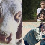 Kate Mara Birthday: 5 Heart-Warming Pictures That Prove the House of Cards Actress' Love for Animals (View Pics)
